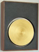 VE Friedland-GE Maestro Westminst4er Door Chime with Vibrato Effect